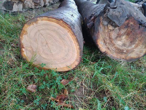 Drzewo opałowe do kominka