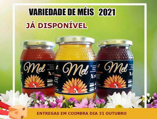 MEL do produtor (entregas em Coimbra 31 de outubro)