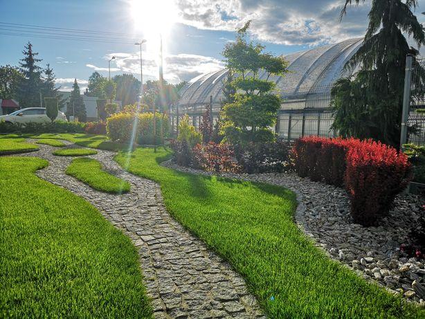 Zakładanie ogrodów, kształtowanie niwelacja terenu karczowanie wycinka