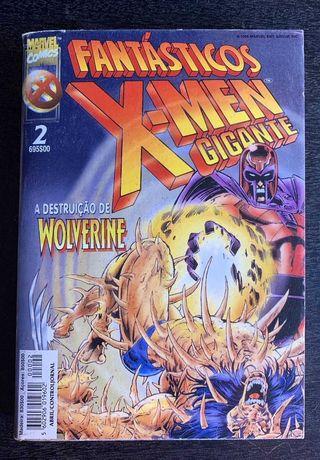 A Destruição de Wolverine (Fantásticos X-Men Gigante 2)
