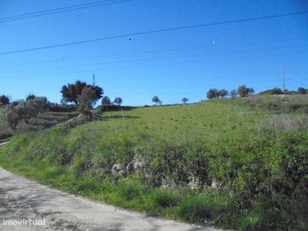 Terreno rústico em Bucelas