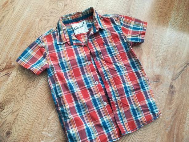 Koszulka koszula rebel r 116 st idealny