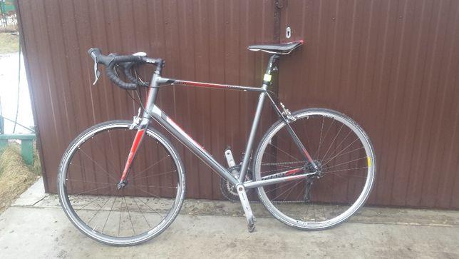 Klarzówka [Rower] Giant