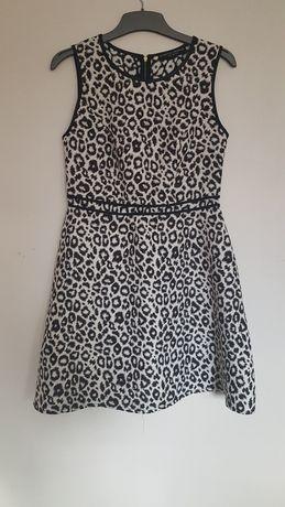 Sukienka Dorothy Perkins 40 L rozkloszowana