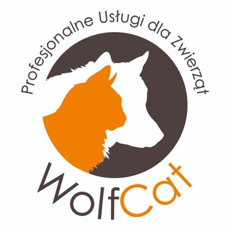 WolfCat- Profesjonalne Usługi dla Zwierząt ( opieka,spacery,behawior)