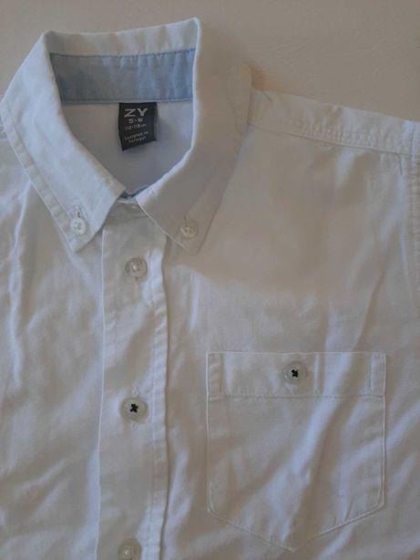 Camisa de menino da Zippy - oferta de portes de envio