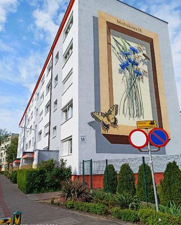 Mural, Graffiti, Artystyczne malowanie ścian, Malowanie pokoi