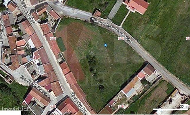 Terreno para construção a 7Km do Cartaxo com 3680m2