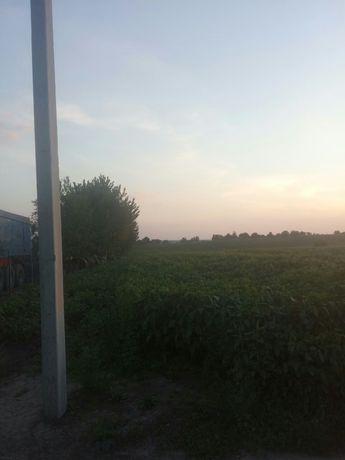 ТЕРМІНОВО Продам земельну ділянку до 13 км від м Луцьк. С Городниця