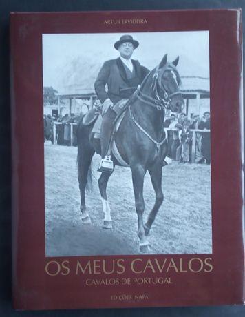 os meus cavalos / Artur ervideira