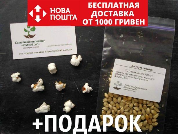 Попкорн семена (около 100 шт) воздушная кукуруза на посадку