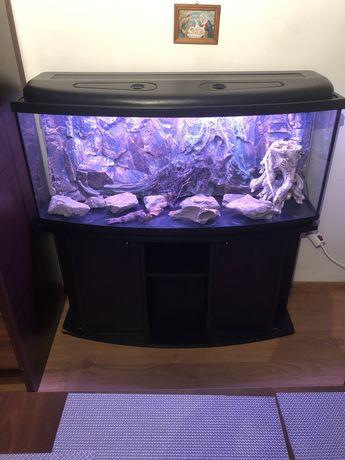 Akwarium panormiczne