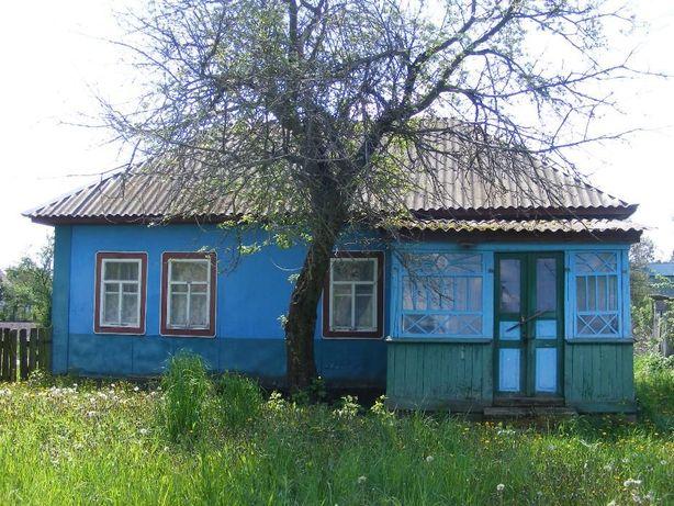 Продам дом с участком в с.Савин Черниговская обл.