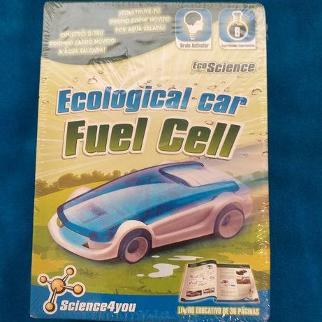 Ecologic car.