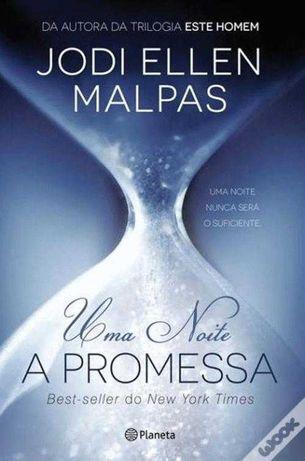 A promessa livro