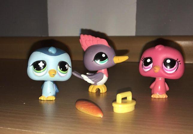 LPS Littlest Pet Shop 3 ptaszki - ORYGINAŁ