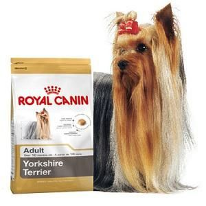 Royal Canin YORK ADULT 15kg MEGA PROMOCJA + 3 gratisy