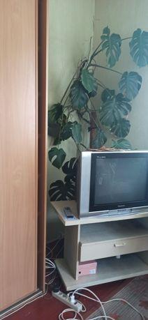 Сдам комнату в Клавдиево - Тарасове, Киевская область