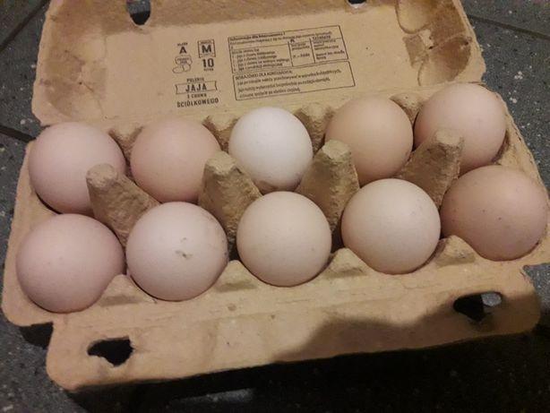 Wiejskie jaja 0.90gr
