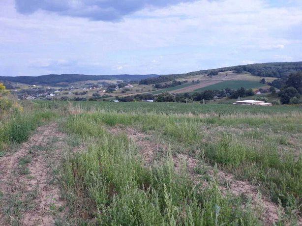 Земельна ділянка 95 соток власник