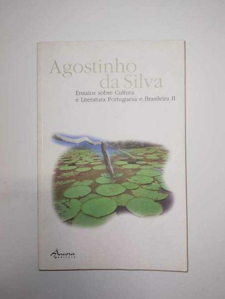 Ensaio sobre cultura e literatura Portuguesa e Brasileira II