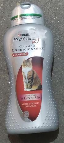 Shampô e condicionador para gato