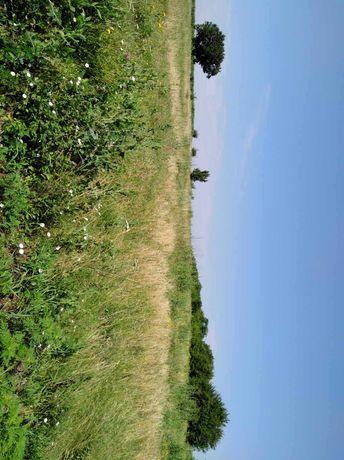 Срочно продам земельный участок в Бережинке