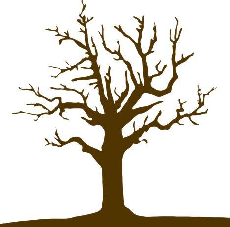 Wycinka drzew, utylizacja gałęzi, łupanie drewna u klienta.