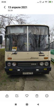 автобус ікарус 256