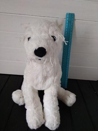 Белый мягкий собака собачка пес