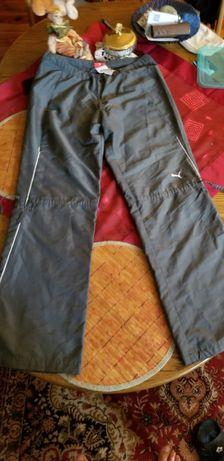 Puma spodnie szare