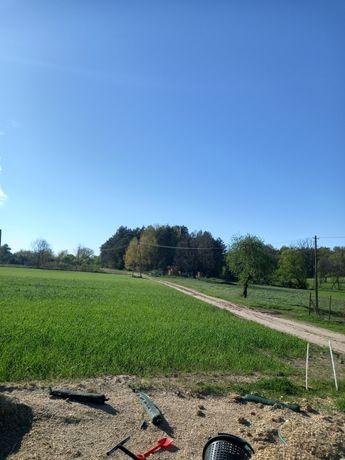Jaka wiejskie ekologiczne