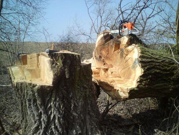 wycinka drzew rębak pielęgnacja ogrodu koszenie trawników