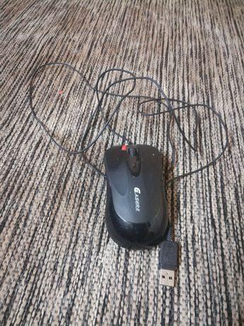 Компьютерная мышь..