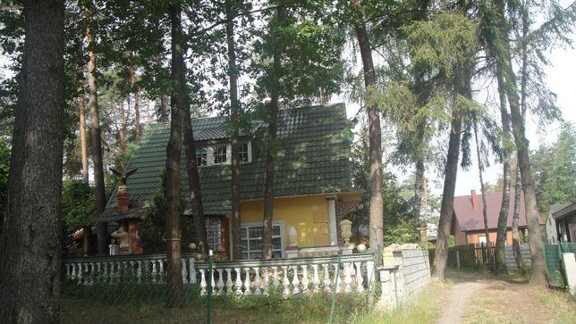 Jezioro Białe Okuninka kod 22-200 Włodawa