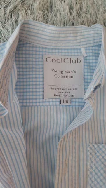 Koszule chłopięce 116 ( cena za dwie sztuki)