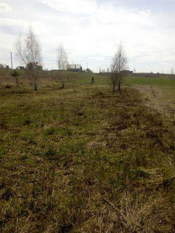 Дві земельних ділянки поруч с.Кустин Рівненського району по 5 000