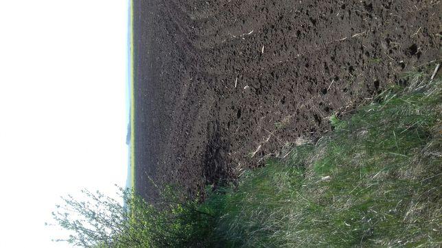 Я хозяин документы на мне земля сельскохозяйственого назначения.