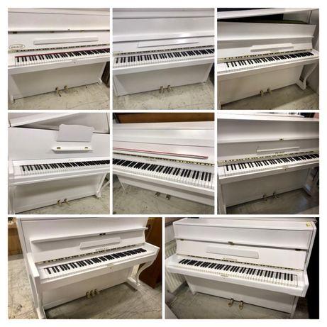 Wybór Białych Pianin Śląsk Białe pianino (Transport Cała Polska)