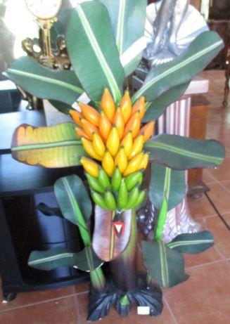 Bananeira decorativa