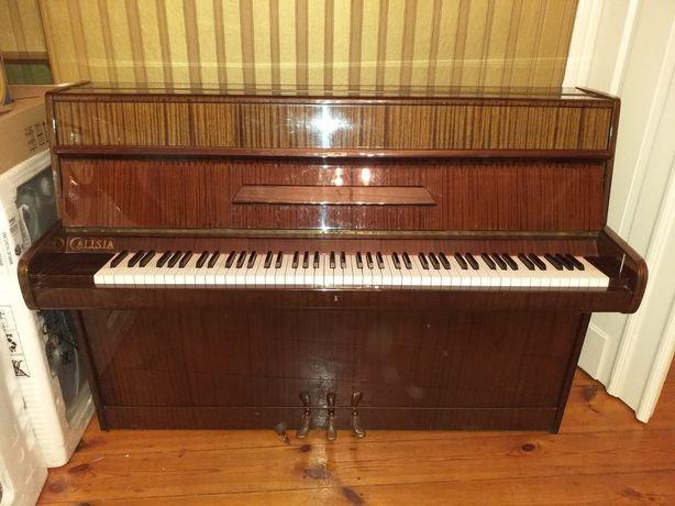 Pianino marki Calisia