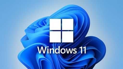 Windows 11 DVD/PEN