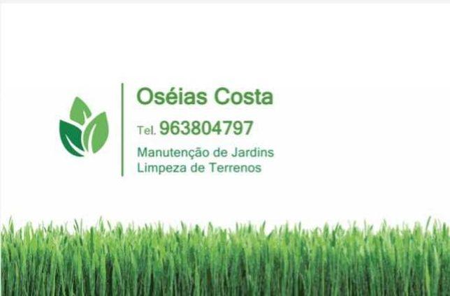 Jardineiro- limpeza e manutenção de jardins/terrenos
