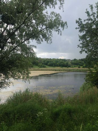 Земельна ділянка у пригороді Києва (15-20 км) серед природи(Kyiv)