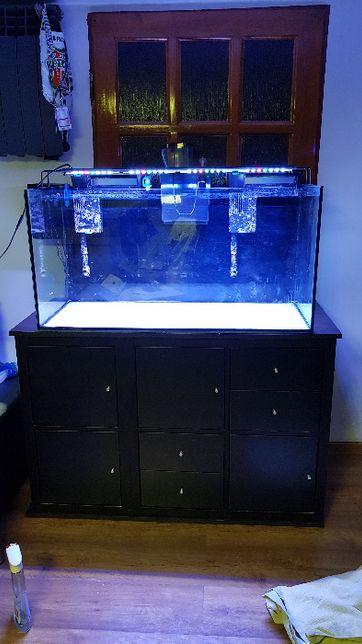 Akwarium morskie 200l
