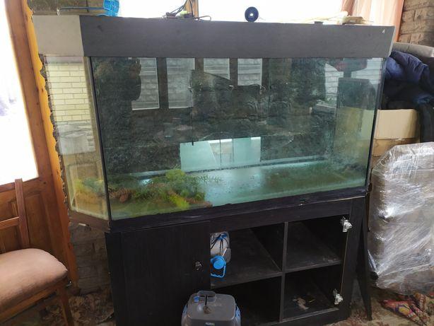 Продам аквариум 500литров