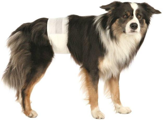 Pieluchy Trixi dla psa s/m 12 szt. opakowanie