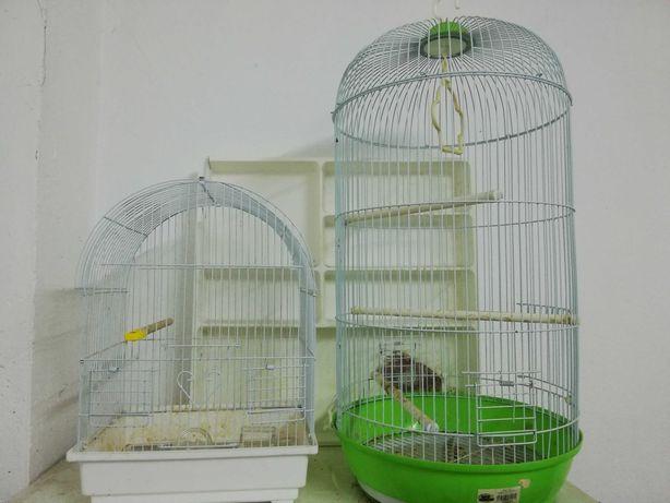 Gaiolas pássaros