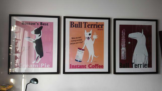 3x kolekcjonerski plakat poster oprawa bulterier boston terier