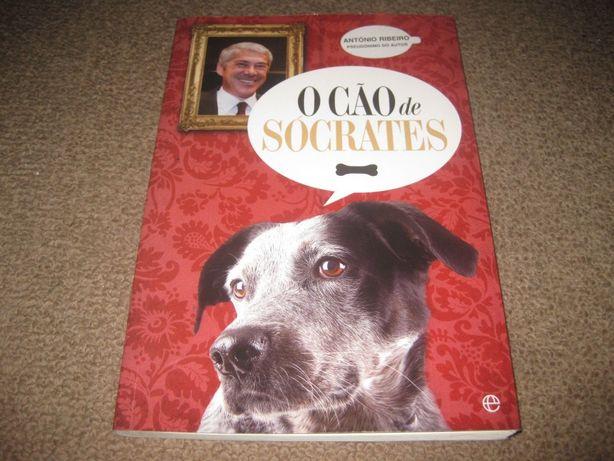 """Livro """"O Cão de Sócrates"""" de António Ribeiro"""